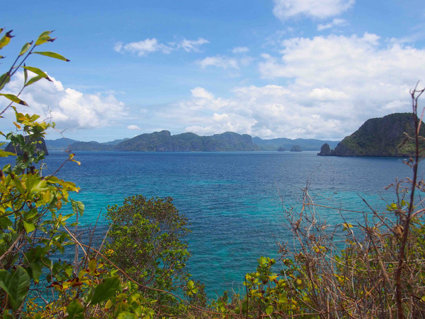 Turquoise sea from Snake Island - Philip