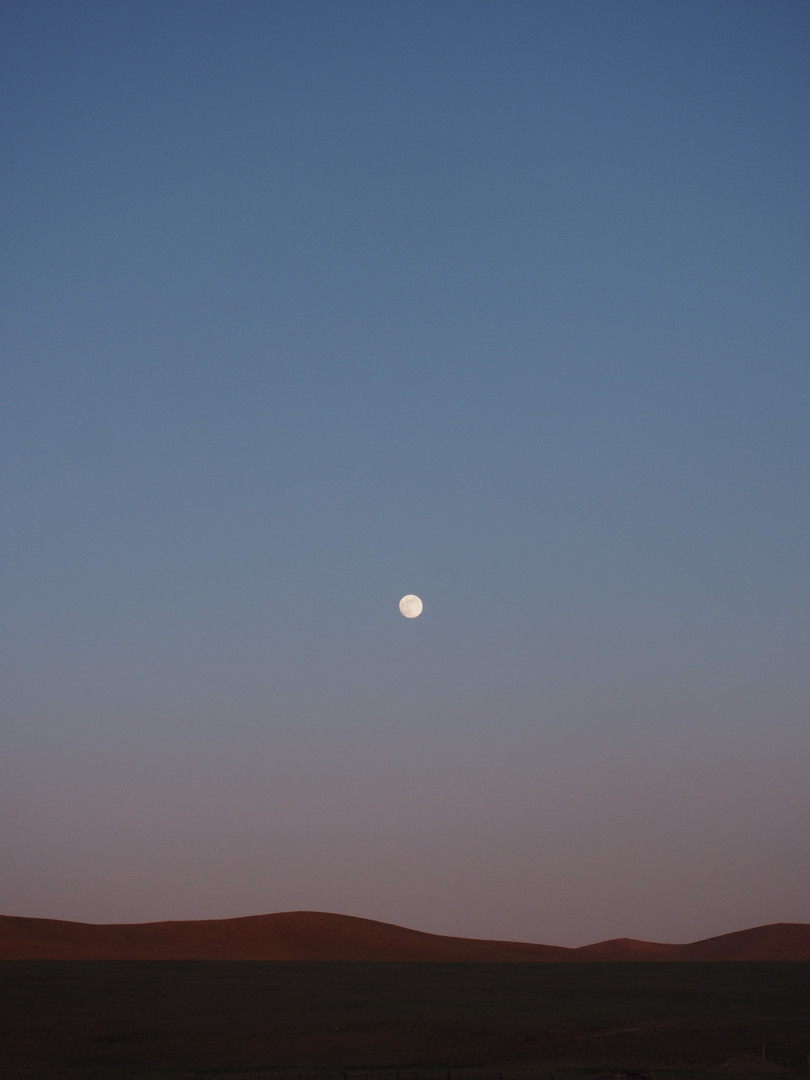 Full_moon_over_Hustai_(Töv,_Mongolia).jp