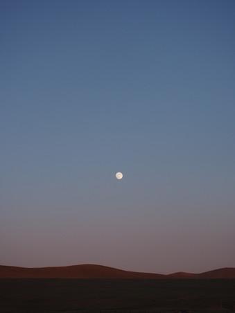 Full_moon_over_Hustai_(Töv,_Mongolia).jp