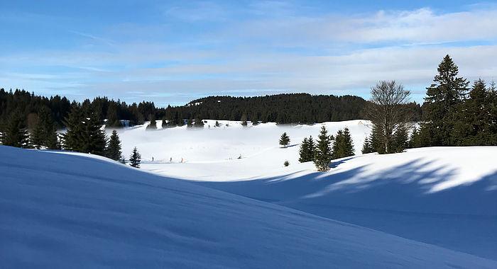 Stage musher paysage.jpg