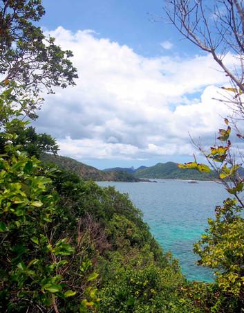 Jungle & sea on Snake Island - Philippin