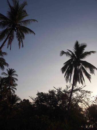 Sunset in Palawam - Philippines.jpg