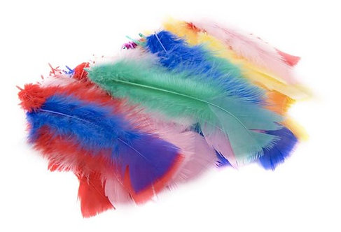 45pc Feathers Assorted Colours