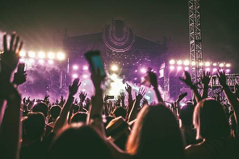 Concert%20Crowd_edited.jpg