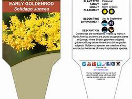 How to Read a Plant Label