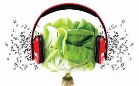 Gardening to Music