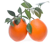 Two oranges.png