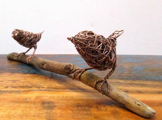 Wrens on driftwood