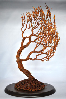The Tree Of Want....