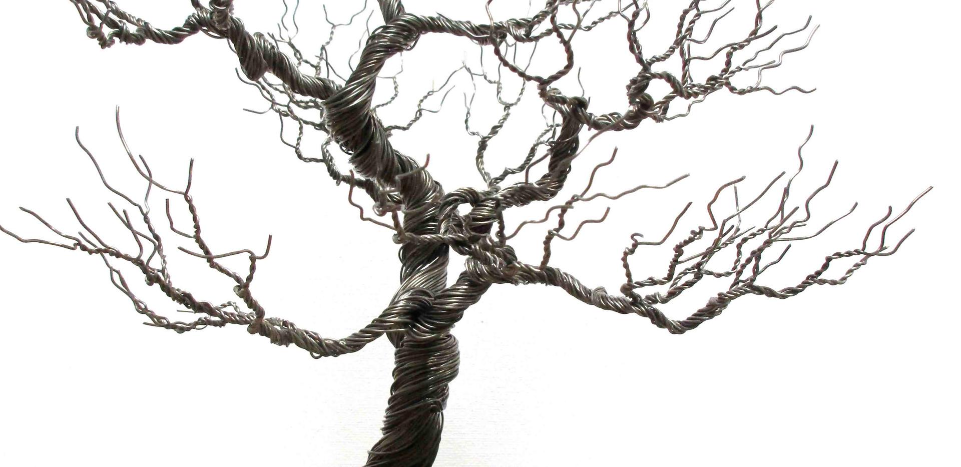 Wild Dark Tree