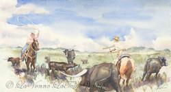 Cattle Roundup II