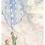 Thumbnail: American Spirit