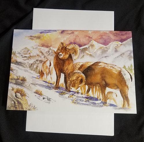 Ruby Mountain Big Horn Sheep