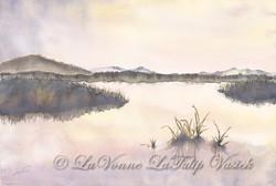 Closure - Lahantan Valley