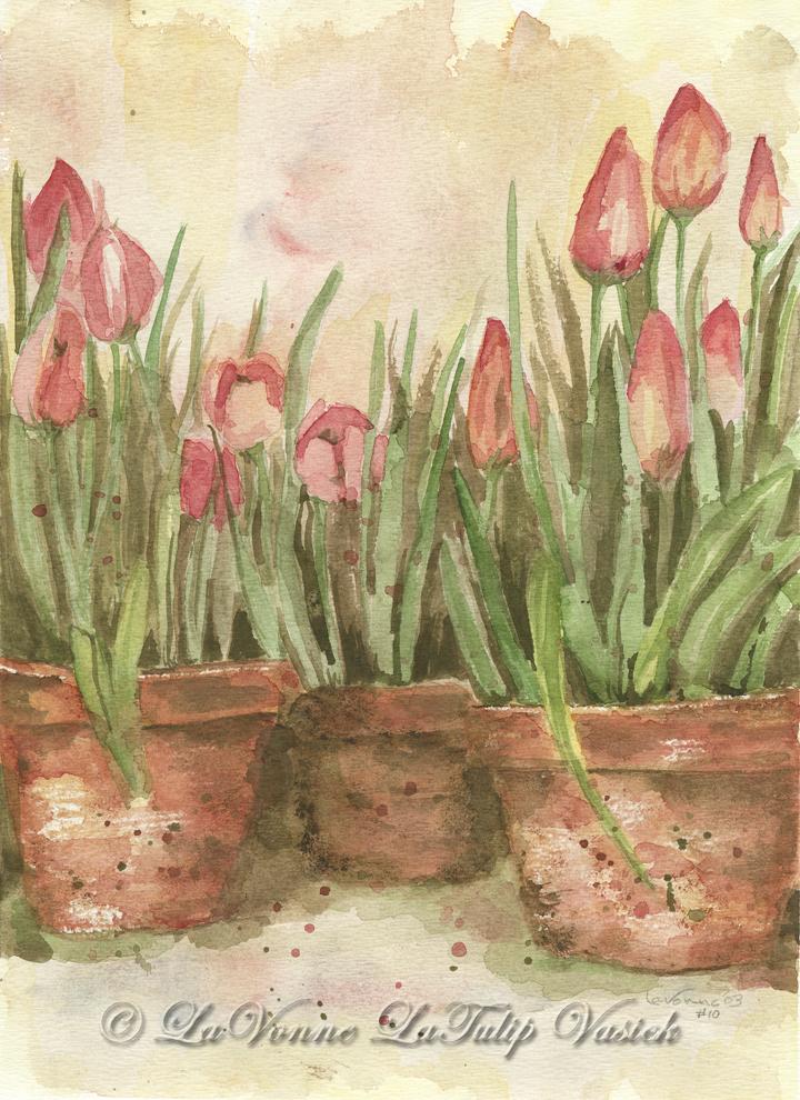 La Tulip