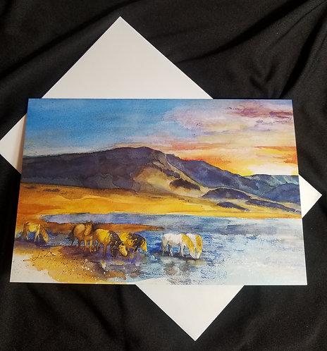 Mustang Sundown - Diamond Playa