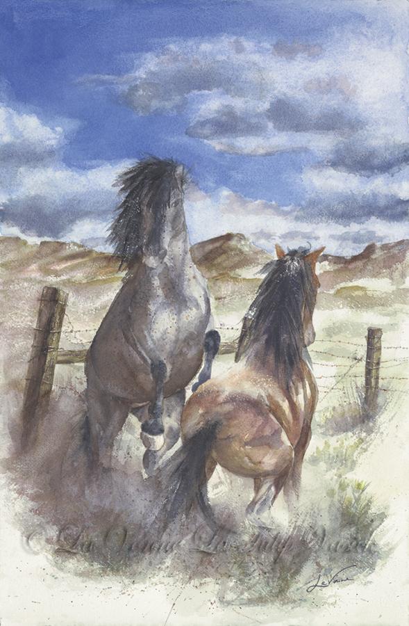 Pine Nut Blue – Stallion Standoff