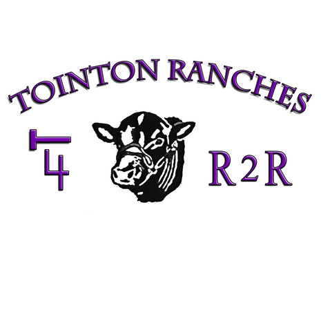 Tointon Ranches