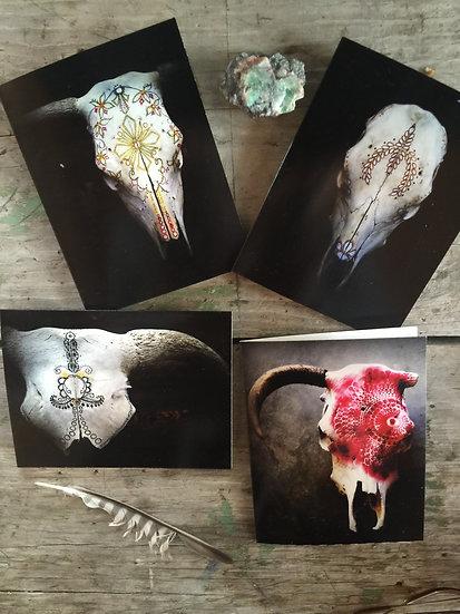 Hand Painted Calamity Skull Greeting Card Set