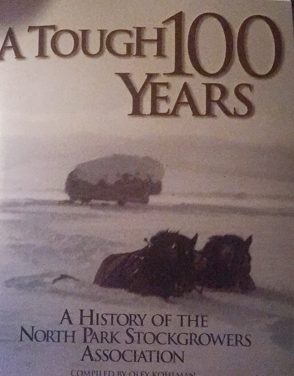 A Tough 100 Years by Oley Kohlman