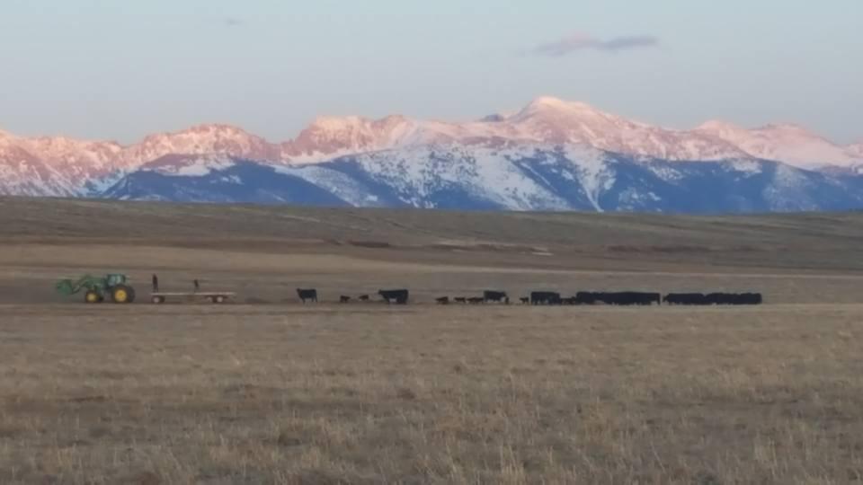 Castle Peak Ranch, Walden, Colorado