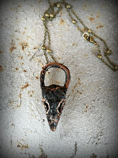 Copper Dipped Bird Skull Necklace SOLD