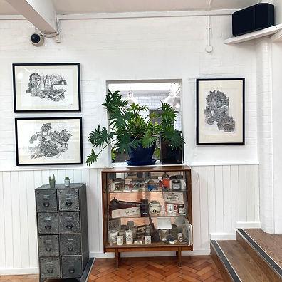 Sue smith exhibition 4.jpg