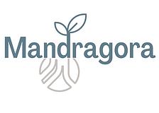 madragora logo.png
