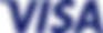 visa_logo_blu.png