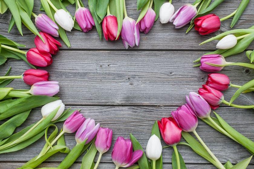 Tulips Heart.jpg