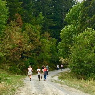 Hiking Uxello 2018.jpg
