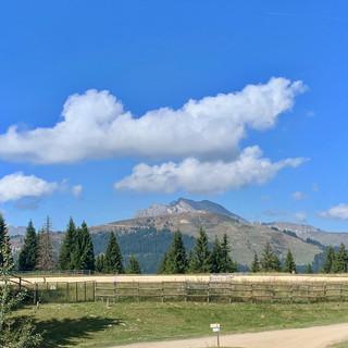 F&F Alpine Walk.jpg