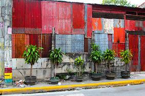 Manila Colors 2