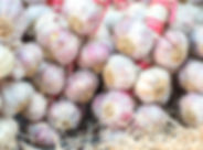 iStock-858914586 garlic.jpg