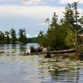 Big Bald Lake, Kawarthas