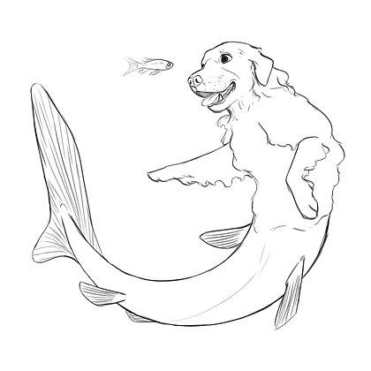Dogfish - 6 x 6 Print