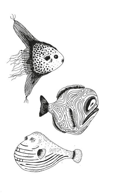 05-Fische_2.jpg