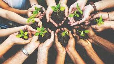 environmentally friendly community hands