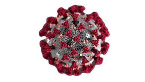 200130165125-corona-virus-cdc-image-supe