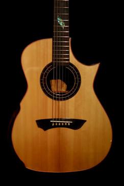 AdamCHAN Guitars 153.jpg