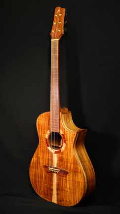 AdamCHAN Guitars #028-011.JPG