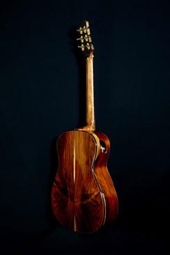 AdamCHAN Guitars S0607 #011 4.jpg