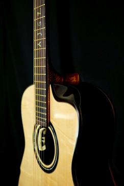 AdamCHAN Guitars S0607 #012 7.jpg