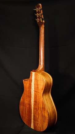 AdamCHAN Guitars #028-012.JPG