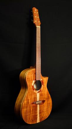 AdamCHAN Guitars #028-016.JPG