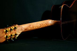 AdamCHAN Guitars 449.jpg