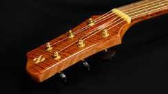 AdamCHAN Guitars #028-038.JPG