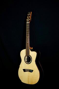 AdamCHAN Guitars S0607 #012 4.jpg
