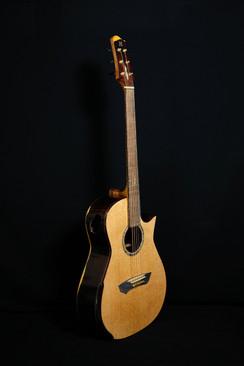 AdamCHAN Guitars #010-04.jpg