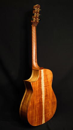 AdamCHAN Guitars #028-017.JPG
